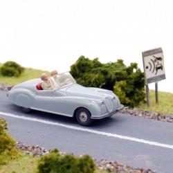 Jaguar-Sport - Wiking - 1/87ème En boite